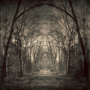 Path_Of_Nightmares___II_by_perception_obscure